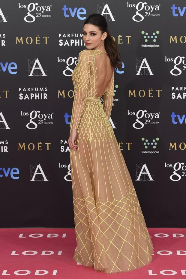 celebrities_alfombra_roja_rosa_premios_goya_2015_cine__71551408_800x